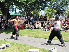 Beacon Hill Piata Party: martial arts (litlnemo) Tags: seattle park beaconhill trianglepark pinataparty stevensplacepark