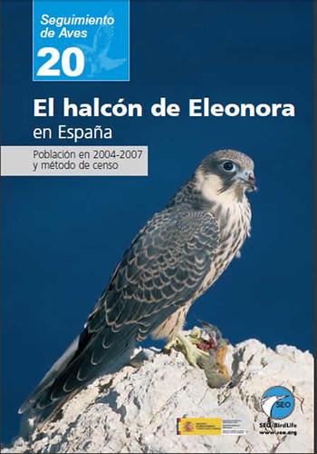 Halcón de Eleonora