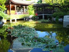 Portland's Chinese Garden - Summer