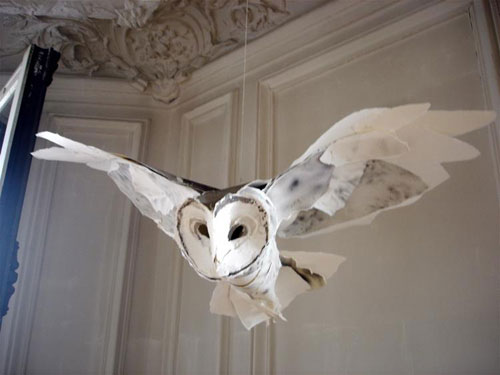 mr_Barn_Owl_270ct09_idx53800687-1