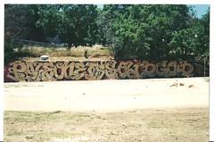 """PALE ONE IS SOLID GOLD"" (BGIZL) Tags: graffiti belmont pale otr stp"
