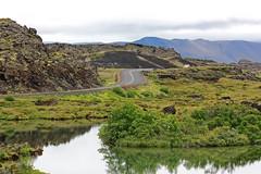 Lake Mvatn (Andrea Schaffer) Tags: summer island iceland islandia july favourite sland 2010 islanda ringroad lakemyvatn hofdi hfi  canonefs1755mmf28isusm  canon450d lakemvatn