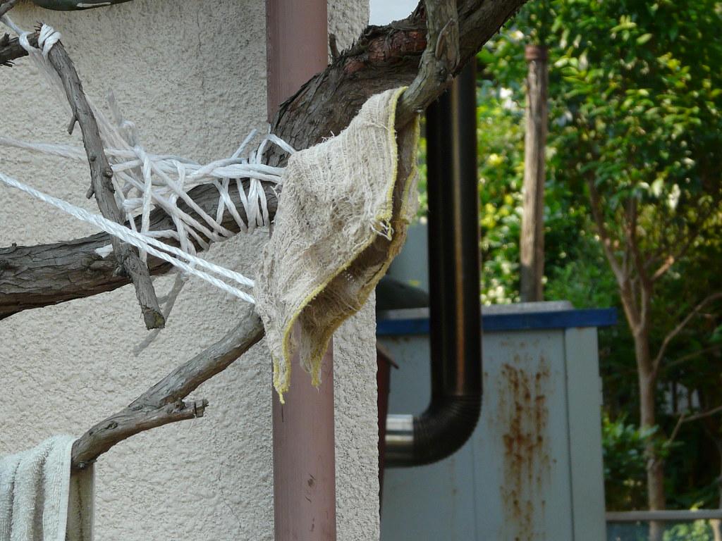 Tree Storage System