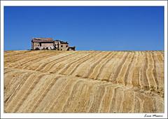 La casa sulla collina (Luca Messori) Tags: lines rural work canon landscape waves country wave hills emilia campagna modena terra colline onde lavoro romagna onda geometrie rurali 450d
