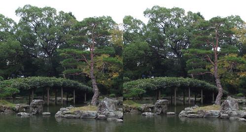 Fujidana, Tensya-en garden, 3D parallel view