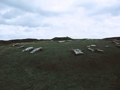 megalithic mystery (gitana duka) Tags: stone landscape low hill arbor henge
