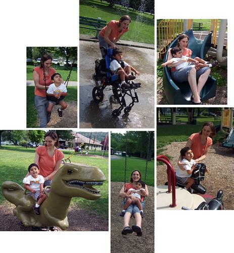 Stewart Park collage