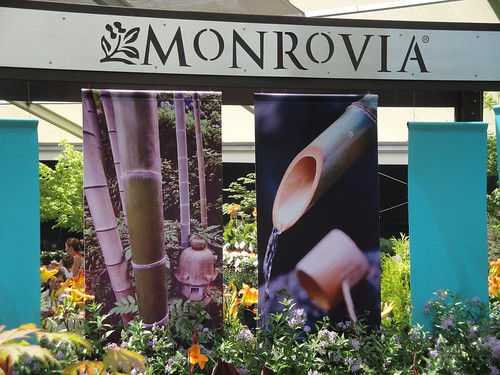 Monrovia Display