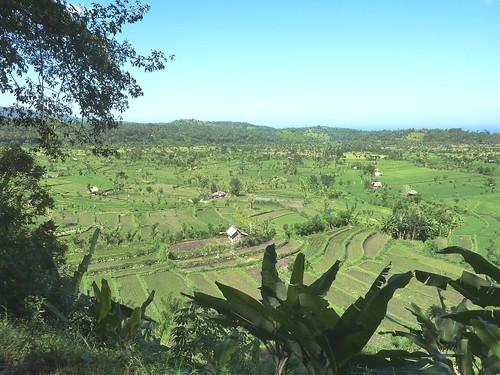 Bali-Tirtagangga (30)