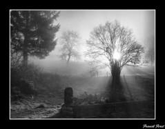 soleil levant sur refranche (francky25) Tags: soleil sur levant doubs comté franche flickraward passiondéclic refranche