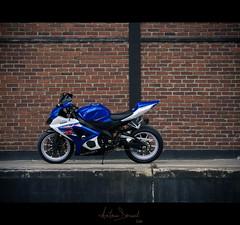 GSXR 1000 K7 (Antonin Douard) Tags: blue white brick bike wall casey bleu motorbike leon jorge lorenzo r 600 brique moto motorcycle yamaha suzuki motogp k8 mur blanc rossi 1000 gsx k6 gp k9 valentino stoner k5 gsxr superbike haslam 750 k7 l0 gsv gsvr