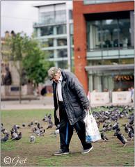 GRATITUDE OF THE BIRDS FOR FOOD (Tyrone Fleming) Tags: birds pigeons hasselblad feedingthebirds h1 manchestercitycentre hasselbladh1 kodakektar100film hc150mmlens gwtphotography