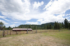 New Life in North Idaho: Side Pasture