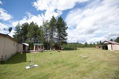 New Life in North Idaho: Back Yard