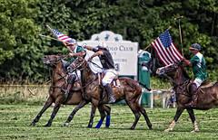 Quechee vs. Adirondack: Polo (Isabelle Ann) Tags: horse vermont polo adirondack artisticphotography quechee quecheeverm