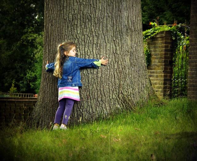 Amamos a los árboles