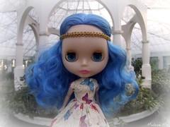 uma flor azul..rs..