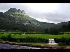 Enlightened (Deepak Kul) Tags: india monsoon greens maharashtra canoneos350d canon1855 sahyadris malshej aroundpune deepakkulkarni