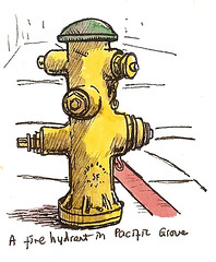 a Pacific Grove fire hydrant