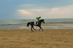 Carreras de caballos de Sanlcar (and_i_liked_it) Tags: de caballos playa carreras sanlucar barrameda