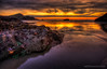 Colorful treasures along the Oregon Coast.jpg (MDSimages.com) Tags: ocean travel summer oregon pacificocean coastal oregoncoast westcoast hdr michaelsteighner mdsimages