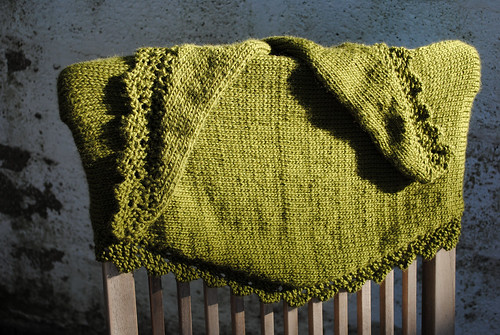 Chinook Scarf 2