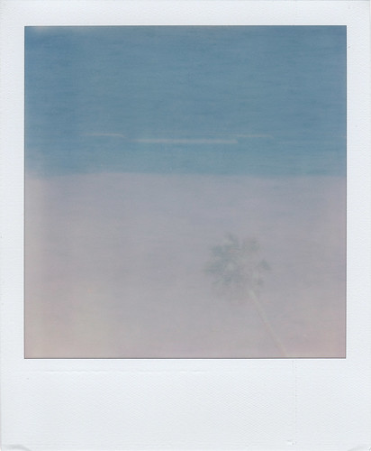 PX70_Palm_Exposed
