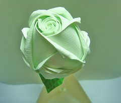 Haiti Green Rose . . . . . . . . . .  i.L.e (The Gift of Gifts) Tags: happiness thankful grateful kindness valentinesday sincerity paperrose diamondrose origamirose  artrose rosasdepapel  livrerose  papierrose giftofgifts giyhng giftofgift giftofgiftsrose  piparardaigh roseenpapier papierstieg papprrose   paprovre thegiftofgiftsrose thegiftofgiftrose thegiftofgifts gg papierrosen    rosedicarta  kertasmawar katgller  papirrua paprrzsa  letrrose raamatrose piparrose    cartearose rose karatasirose papperrose papurrose giftofgiftsrosehotmailcom