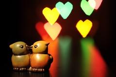 Amore... [Explore 22/08/2010] (Tonionick1) Tags: blur love birds reflections hearts nikon colours foto heart bokeh 14 uccelli di romantic che 50 cuori ti colori riflessi cuore amore romantico tua sfocato pi 14mm uccellini piace d5000 nikond5000 tonionick pscontestlatuafotochetipiacedipi pscontestla