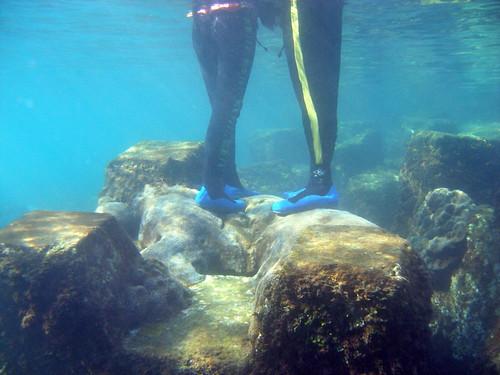 出水口浮潛客直接踩在白化的珊瑚群體上(唐國勳 攝)