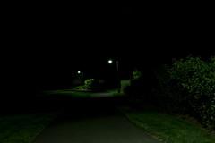Silencio (Creepella Gruesome) Tags: park dark lights evening shadows path spooky nighttime mysterious desolate bushes filmnoir phantasm