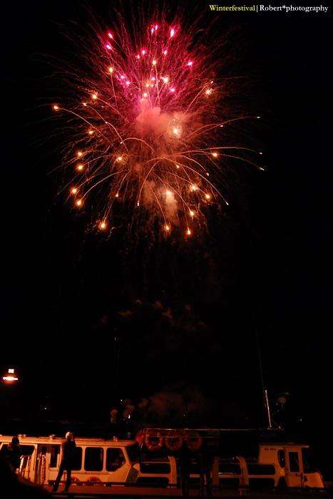 Firework 07