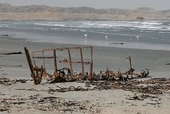 Shipwreck and flamingoes, Luderitz, Namibia