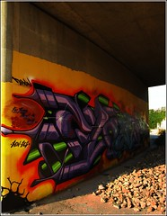 Flown Pillar (Cheeze_) Tags: graffiti crew 905 mississauga dmc 2010 flown