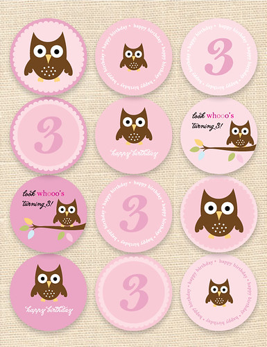 Owl Cupcake Toppers and Stickers
