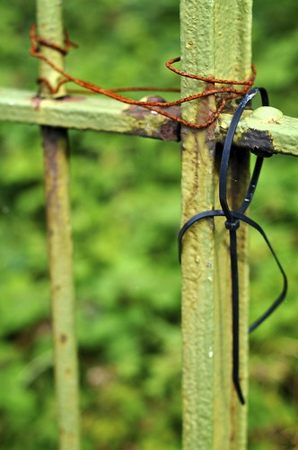 Rusted Wire And Plastic On The Fence