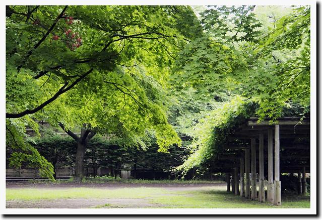 100626_160407_上田城
