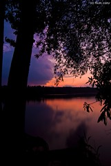 Tree After Sunset (Paul Cory) Tags: trees sky orange lake water colors silhouette clouds reflections flickr purple dusk northcarolina tokina1224 states chathamcounty jordanlake canoncamera timeofday postedto tokinalens canoneos50d parkerscreekstaterecreationarea