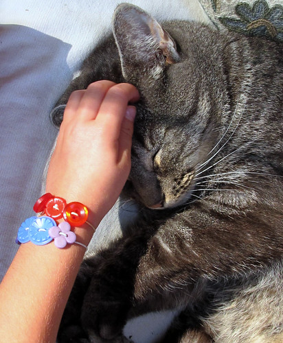 button bracelets and a sleeping kitty