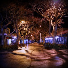 commerce st (tharrin) Tags: newzealand tree night canon dark square geotagged lights vanishingpoint hamilton 365 rogue commercestreet frankton trp 550d 365daysproject tharrin 365june2010