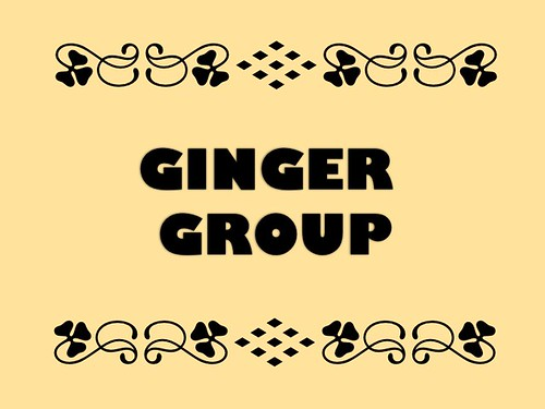 Buzzword Bingo: Ginger Group