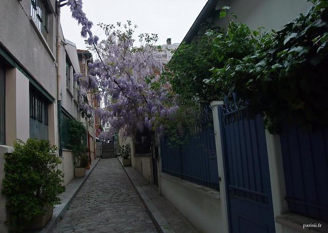 Dans cette petite rue de Paris, les fleurs des jardins des maisons sont partout
