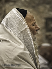 psalm (David Mor) Tags: jerusalem jewish rabbi oldcity liturgy psalm vocal yemenite whitebeard morningprayer prayingshawl
