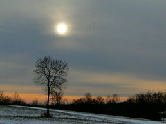 Winter Sunset (cindy47452) Tags: winter sunset sky terrain sun snow sol evening hill indiana orangecounty dschx1