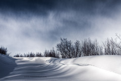 Quiet Winter Storm (mortenprom) Tags: winter snow norway norge skandinavien norwegen explore noruega scandinavia noorwegen noreg skandinavia 2011 ef1740mmf4lusm canoneos5dmarkii mortenprom