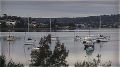 IMG_0017 (johncl2700) Tags: lakemacquarie boats water cloudy