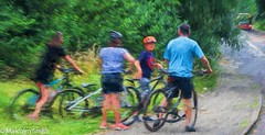Family Forest Ride (M C Smith) Tags: family forest cycling bus red green trees road pentax k3 cycles people blue black line pavement weeds yellow