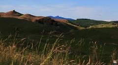 Mt_Titiraupenga (Explored) (Dragostesun Photography) Tags: southwaikato newzealand aotearoa mttitiraupenga sol vida explored landscape homeland perfectplaces