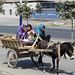 Uyghur children on cart
