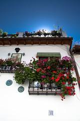 20100604 Granada 261 (blogmulo) Tags: travel flowers españa house flores casa spain ar balcony andalucia viajes granada balcon 2010 albaicin albaycin blogmulo